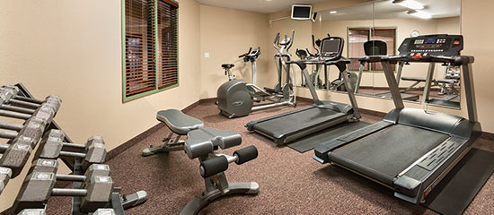 Fitness Centre at Days Inn & Suites Thunder Bay North