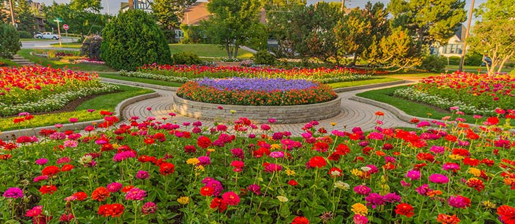 Colorful flower garden to visit in Thunder Bay